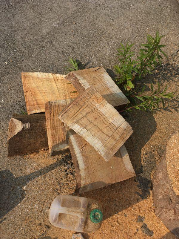 丸太のセルフ製材